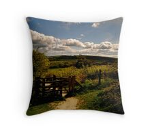 The Gate to happiness Throw Pillow