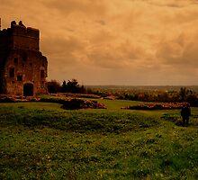 Donnington Castle by Wayne Cook