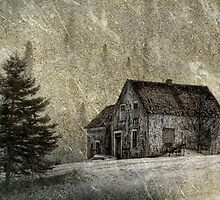 The Old Farmhouse by TheNatureOfThings