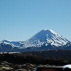 Mt Rapheu, NZ by Corrie Wharton