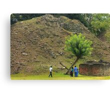 Shadow of a tree Canvas Print