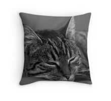 Holly III Throw Pillow