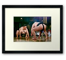Takes Two To Tango Framed Print