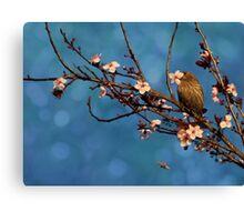 Bird n Blossoms Canvas Print