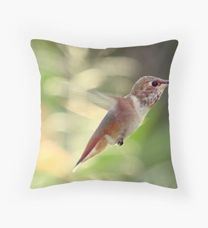 Into Thin Air Throw Pillow
