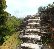 Ancient stone stairs by zumi
