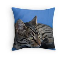 Holly IV Throw Pillow