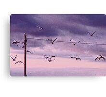 Electrical Flight Canvas Print