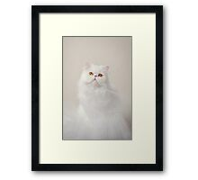 Ballerina Cat Framed Print