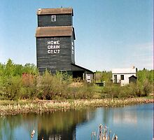 Grain Elevator, Ukrainian Cultural Heritage Village near Edmonton, Alberta, Canada by Adrian Paul