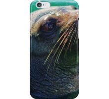 Portland Seal iPhone Case/Skin