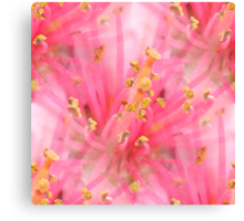 Seamless Peach Blossom Canvas Print