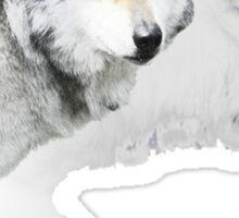 gray wolf and white wolf Sticker