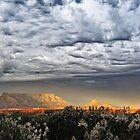 mono sky by Richard Adcock