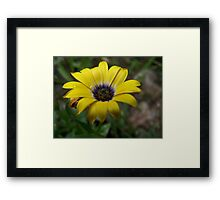 beautiful...to me. Framed Print