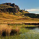 Old Man of Storr , Isle of Skye by Thomas Peter