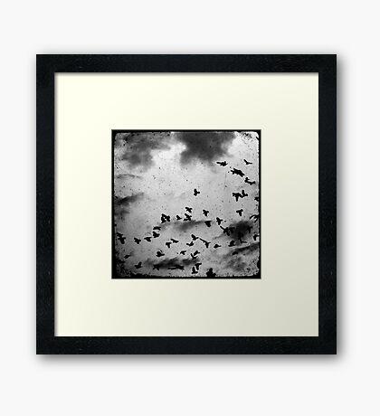Doomsday (for black) Framed Print