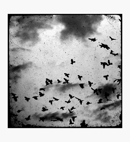 Doomsday (for black) Photographic Print