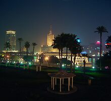 Night on the Nile by Robert Case