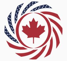 Canadian American Multinational Patriot Flag Series 1.0 by Carbon-Fibre Media