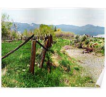 Idaho landscape Poster