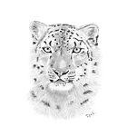 Snow Leopard by rosannamaria
