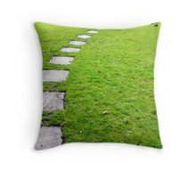 The Path to Stevenson Throw Pillow