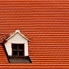 Red Roof and Window by MaluC