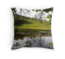 Across The River Swale From Low Ingsque Wood Throw Pillow