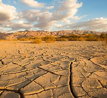 parched ground in the Aravah desert, Israel by PhotoStock-Isra