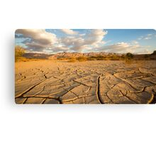 parched ground in the Aravah desert, Israel Canvas Print