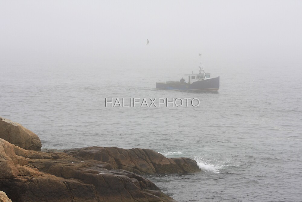 Out Of The Fog by HALIFAXPHOTO