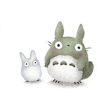 Totoro Buddies Fan Art Photographic Print