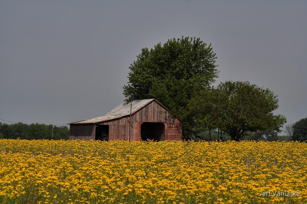 Bloomin' Barn by Jeff VanDyke