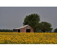 Bloomin' Barn Photographic Print