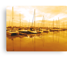 BOATS IN THE WETLAND  Canvas Print