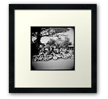 silver salts and chrome Framed Print