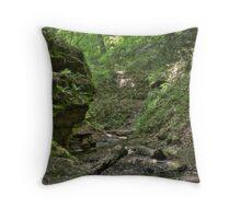 Trail #2 - Ravine Throw Pillow