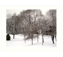 A Winter Scene Art Print