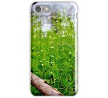 Water Plantain iPhone Case/Skin