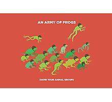 An Army of Frogs Photographic Print
