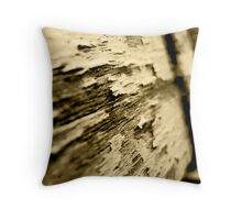 Old Wooden Seat Throw Pillow
