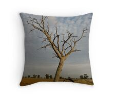 On the road from Raywood to Elmore Throw Pillow