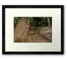 Roost Framed Print