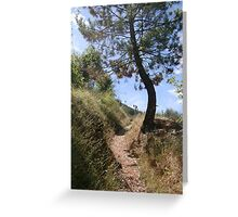 Provencal track Greeting Card