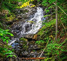 Mackintosh Falls by mlphoto