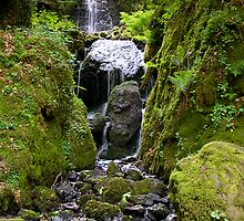 Canonteign Falls 1 by bubblebat