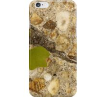 Starter Home iPhone Case/Skin
