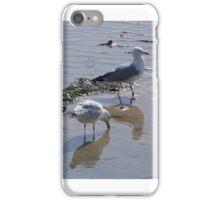 Seagulls iPhone Case/Skin