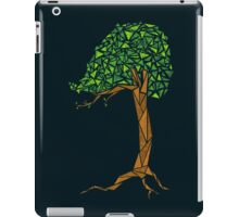 Trigonometree iPad Case/Skin